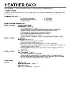 ecommerce sales manager resume e commerce management b2b sales resume exle jerome name brand clothing outlet bronx