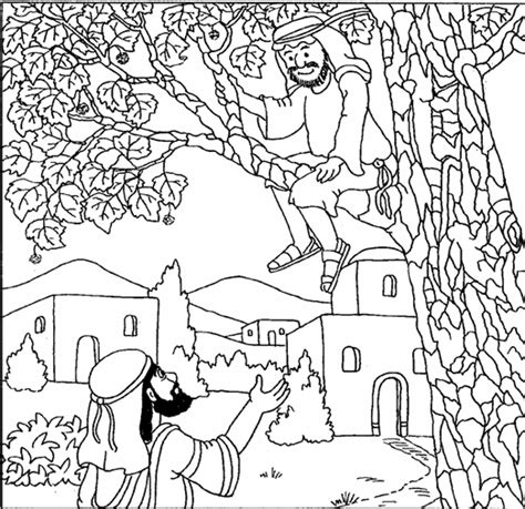 zacchaeus  coloring pages sketch coloring page