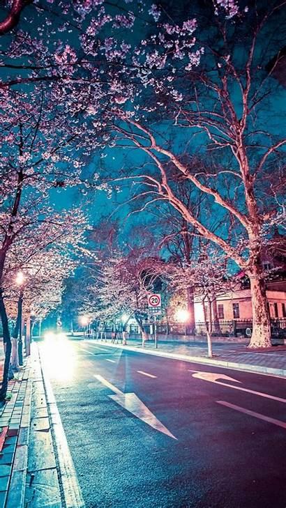 Scenery Japanese Iphone Night Street Cherry Blossom