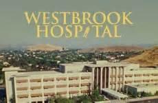 westbrook animal hospital go christian tv christian and television