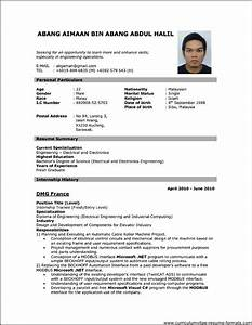 job resume format download pdf listmachineprocom With cv format pdf
