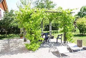 Pergola Mit Wein Bepflanzen : massgeschneiderte pergola und pavillon im garten ~ Eleganceandgraceweddings.com Haus und Dekorationen