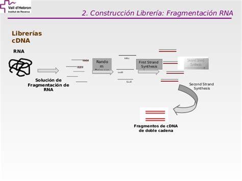 libreria cdna curso de 243 mica uat vhir 2012 tecnolog 237 as de