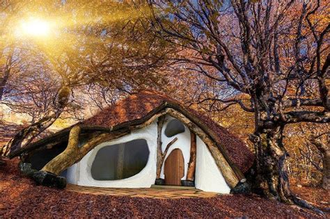 Tiny Häuser österreich by Ein Haus Aus Einem Einzigen Baum Design Interieur