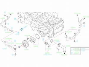 21210aa300 - Engine Coolant Thermostat