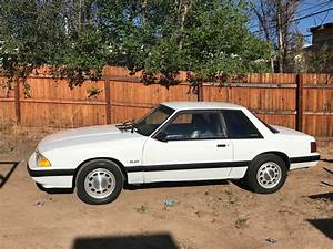 Daily Turismo: Police Please: 1989 Ford Mustang LX SSP