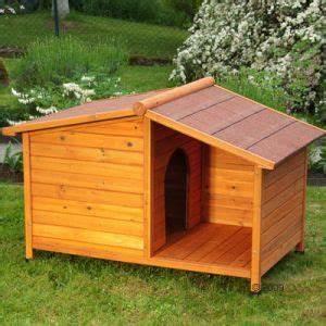 Niche Grand Chien Xxl : besoin de votre avis pour une niche chiens forum animaux ~ Dailycaller-alerts.com Idées de Décoration