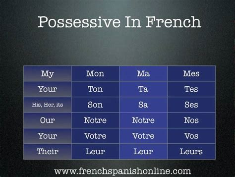 french possessive adjectives youtube