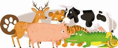 Animals Gaelic Header