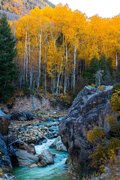 best fall colors the best fall foliage trips in the usa everyday runaway