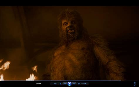 wolfman werewolves photo  fanpop