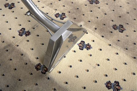 carpet and upholstery cleaning edenvale carpet and upholstery cleaning service