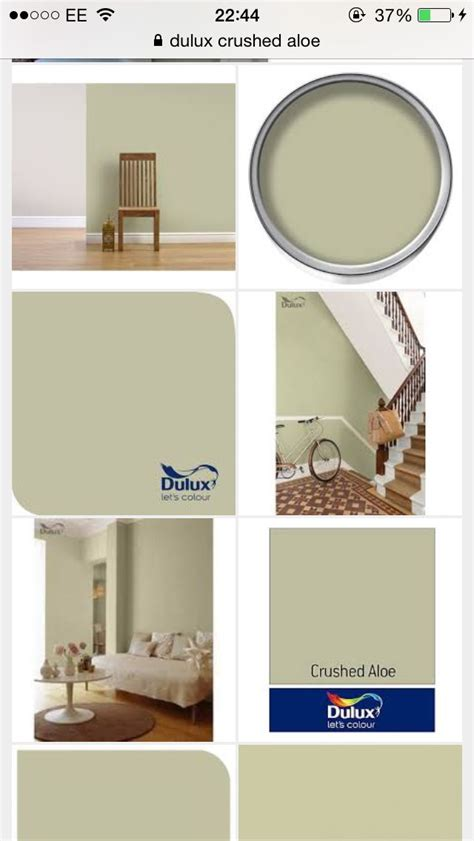 dulux crushed aloe paint for the kitchen paint