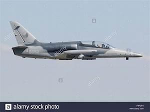 Czech Air Force Aero L-159 Alca Stock Photo, Royalty Free ...