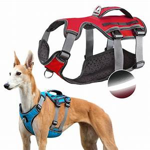 Adjustable Dog Harness With Lift Handle Reflective No Pull