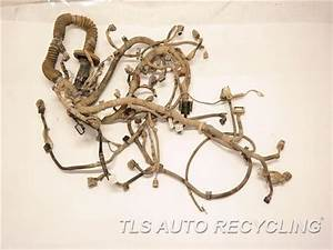 2006 Toyota Tacoma Engine Wire Harness - 82121-04490 Engine Wire Harness - Used