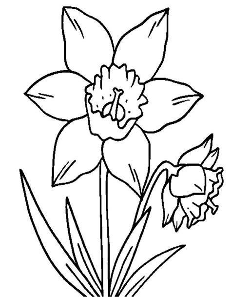 immagini di fiori da stare e colorare disegni di fiori da colorare foto 27 40 nanopress donna