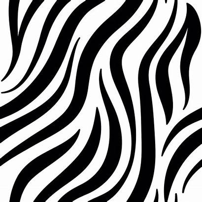 Zebra Pattern Rawpixel Animal Leopard Patterns Cebra