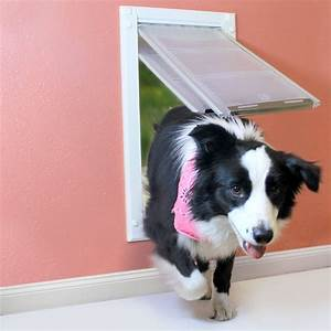 Pet door installation doggie doors for sale boise idaho for Dog doors for sale