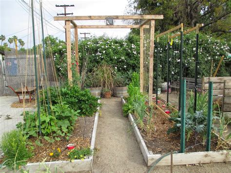 Andie's Way Trellis Ideas For Tomatoes, Cucumbers, Beans