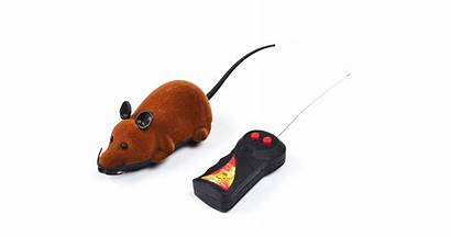 Cat Mouse Toy Funny Wjs Brown Kogan