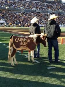 Wyoming Cowboy Football Mascot