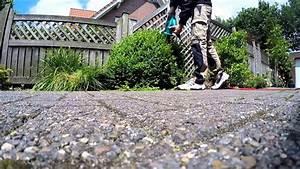 Buchsbaum Rund Schneiden : heckenscheren test akku elektrische buchsbaum rund schneiden youtube ~ Frokenaadalensverden.com Haus und Dekorationen