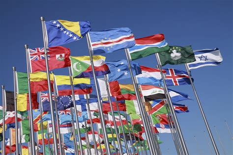 a lot of flags of the political cycle 187 everything voluntary a lo