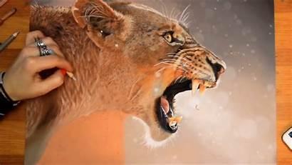 Lion Female Svea
