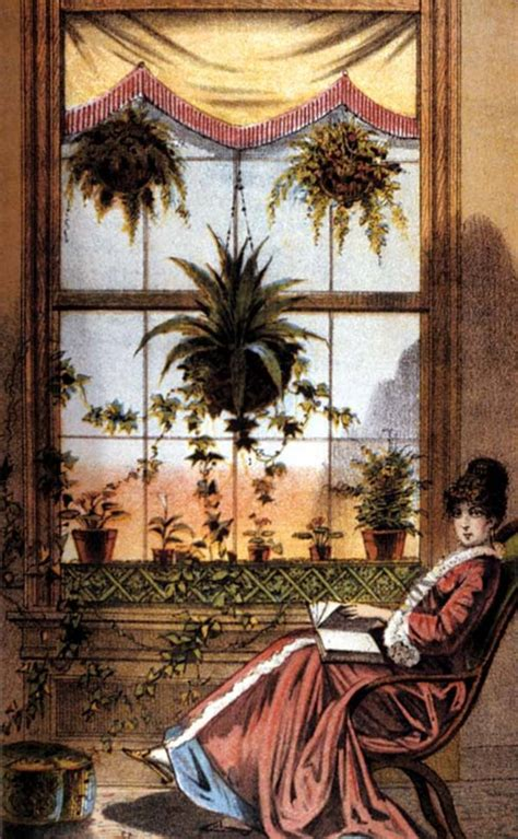 decorate  victorian house  plants
