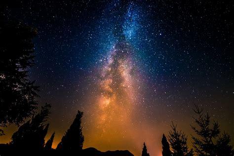 Space Star Night Milky Way Tree Hd Wallpaper