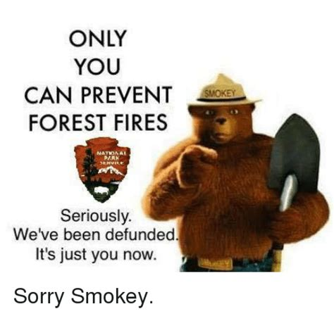 Only You Can Prevent Forest Fires Meme - only you can prevent forest fires atonai seriously we ve been defunded it s just you now sorry