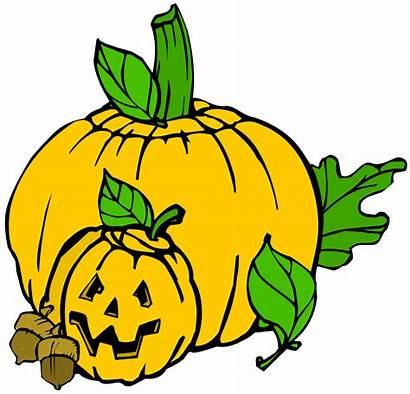 Pumpkins Clip Colour Onlinelabels Svg