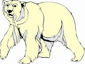 Standing Polar Bear Outline