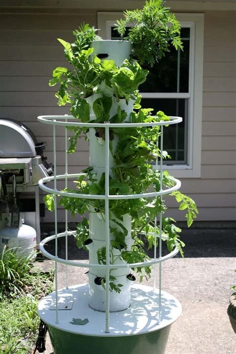 Vertical Gardening Techniques by Tomato Vegetable Vertical Aeroponic Garden Great
