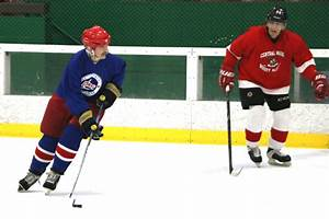 The world's oldest ice hockey player skates on at 95 ...