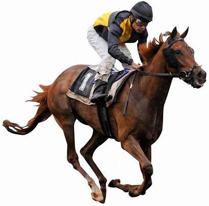 Jockey Horse Race Transparent