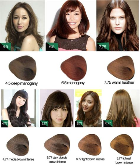 Names Of Hair Dyes by Quality Name Of Hair Dye Dye Brands Professional