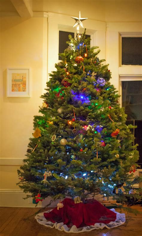 christmas tree pests don t panic effective wildlife