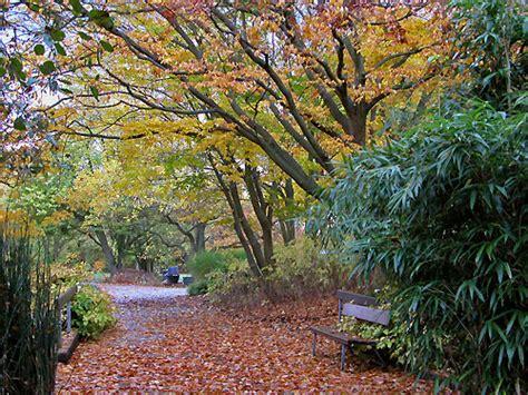 Restaurant Nähe Botanischer Garten Hamburg by Botanischer Garten Hamburg Im Oktober