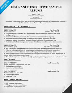 resume purchase orders With insurance resume examples