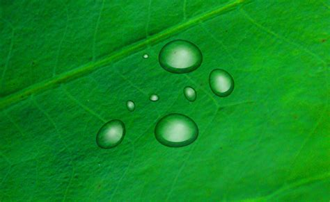 How to use Illustrator to create water drops | Vectortwist ...