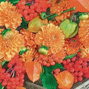 Herbst Tischdeko Natur : servietten tischdeko natur herbst blumen 20 st 3 lagig 33x33cm ~ Bigdaddyawards.com Haus und Dekorationen