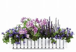 Balkonkasten Bepflanzen Südseite : farbenpr chtige blumenk sten balkonwunder ~ Indierocktalk.com Haus und Dekorationen