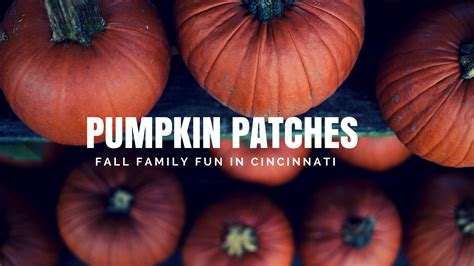 Colorado Pumpkin Patches 2017 by 11 Best Family Friendly Pumpkin Patches In Cincinnati