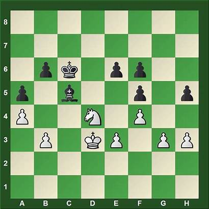 Nd4 Carlsen Karjakin Critical Positions Chess Move