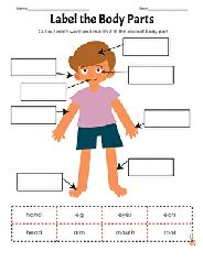 kindergarten spelling worksheets  printables