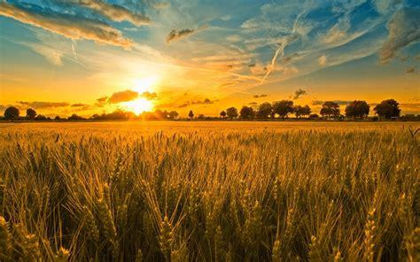 Farming Wallpaper HD | PixelsTalk.Net