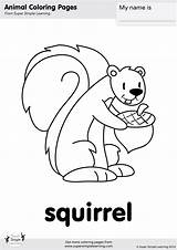 Squirrel Coloring Simple Hickory Dickory Worksheets Printable Crash Super Songs Printables Kindergarten Song Theme Preschool Supersimple Worksheeto Contains sketch template