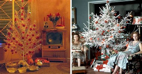 showing  people   decorate  homes